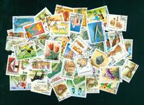 Russiske stater 50 forskellige