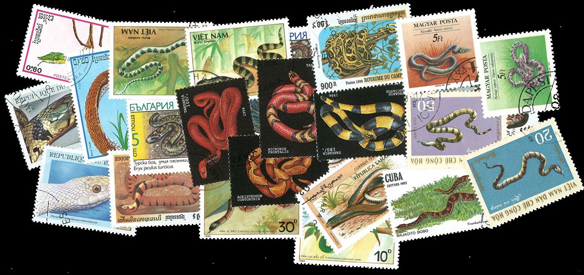25 slanger
