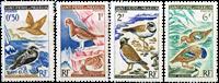 Saint-Pierre & Miquelon birds