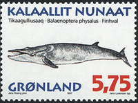 Greenland - 1997. Whales Part III - 5,75 kr - Multicoloured