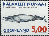 Greenland - 1997. Whales Part III - 5,00 kr - Multicoloured