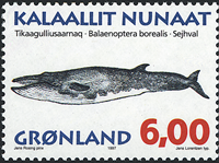 Greenland - 1997. Whales Part III - 6,00 kr - Multicoloured