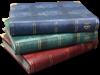 Indstiksbog - assorterede farver - Str. A4 - 64 hvide sider - krokodille-look og metalhjørner