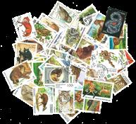 Vilde dyr - 100 forskellige