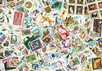 1200 animals