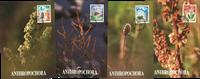 Plants and animals 1991