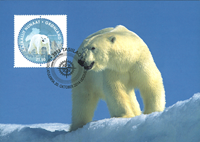 Greenland - Pole-to-Pole - Maxi Cards