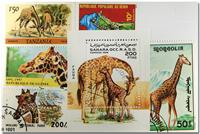 Giraffe 1 souvenir sheet and 5 stamps