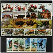WWF 5 different sets