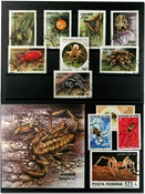 Spiders 1 souvenir sheet, 1 set and 5 stamps