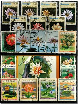 Vandliljer 1 miniark, 1 sæt og 13 forsk. frimærker