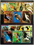 Ækvatorial Guinea - Kontinentets fugle 3 sæt