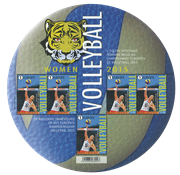 Belgium - Volleyball - Mint sheetlet