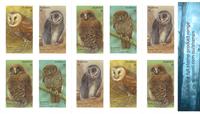 Australia - Owls - Mint booklet 10v