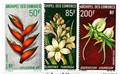 Comorerne - YT 26-28