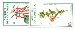 Comorerne - YT PA37-38