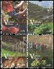 Portugal - Vin fra gamle vinstokke - Postfrisk sæt 4v