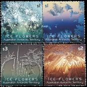 Australian Antarctic - Ice Flowers - Mint set 4v