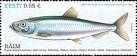 Estland - Østersøsilden - Postfrisk frimærke