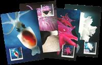 Australian Antarctic - Marine - Maxi Cards