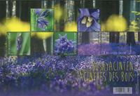 Belgium - Spanish bluebell - Mint sheetlet