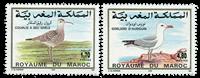 Marocco - YT 1168-69 - Mint