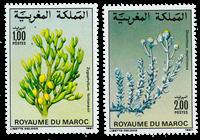 Marocco - YT 1031-32 - Mint