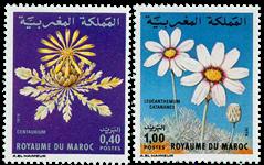 Marokko - YT 837-38 - Postfrisk