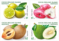 Coco Islands - Garden Fruits - Mint set 4v
