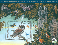 Hungary - Owls - Mint souvenir sheet