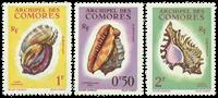 Comorerne - YT  19-21, konkylier