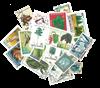 25 flora-fauna