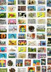 Frankrig - Kilovare - Billedmærker - 500 gr.