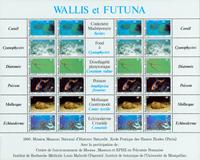 Wallis & Futuna - Faune et flore pélagiques