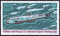 French Antarctic - Fish - Mint 1v