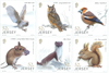 Jersey - Animals in the forest - Mint set 6v