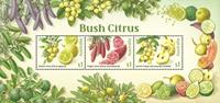Australia - Cítricos de arbusto - Hoja bloque nuevo