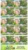 Australie - Le jardin - Carnet neuf 10v