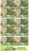 Australie - Le jardin - Carnet oblitéré 10v