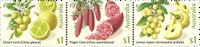 Australia - Cítricos de arbusto - Serie 3v. nuevo