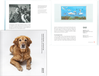 Denemarken - Jaarboek 2019 - Postfris velletje