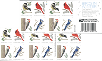 Etats-Unis - Birds in Winter sa * - Carnet neuf