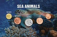 World - Sea animals - 5 coins with animals from the sea