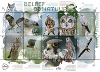 Netherlands - Birds of prey and owls - Mint souvenir sheet