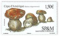 St. Pierre & Miquelon - Svamp - Postfrisk sæt