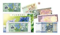 Fiori II - 5 banconote