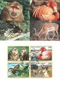 FN Geneve -  Truede Dyr 1998 - Maximumskort