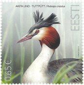 Estonia - Fauna: Svasso maggiore - serie nuova