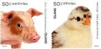 Islande - Les petits des animaux de la ferme - Série neuve 2v
