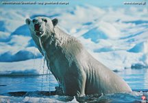 Plakat: Isbjørn
